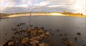 STRIPED BASS fishing in November – 247 OutDoor Addiction