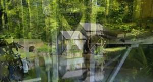 "03 Blue Ridge Parkway & Great Smokies – ""Tin Tent"" Camping Tour of America's National Parks"