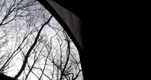 Appalachian Thru-Hike 2014 VIDEO 100 0085