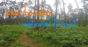 Backpacking Sam Houston National Forest – Lone Star Hiking Trail – Part 1