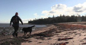 Caribou Munroes Island – Hiking in Nova Scotia