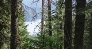 Coeur d'Alene Region – Four Great Hiking Trails