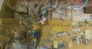 Goldstar Outdoors Hunting & Fishing Store Edmore, Michigan