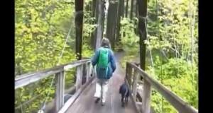 Hiking Pratt River Trail, Middle Fork Snoqualmie, Washington