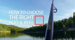 Important Factors That Will Help You Buy the Right Fishing Equipments