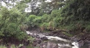 JenJones Goes Hiking – Boiling Pots – Hilo Hawaii