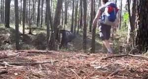 Lone Star Hiking Trail – Trekking Texas (Trailer)