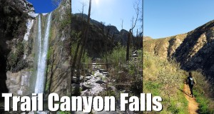 Trail Canyon Falls – Hiking Los Angeles –  (HD)