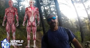 Triceps for Hiking Performance